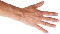 Minyak Bulus : Cara Memperbesar Payudara Alami Dengan Tangan Pria